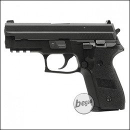 WE F229 Vollmetall GBB (frei ab 18 J.)