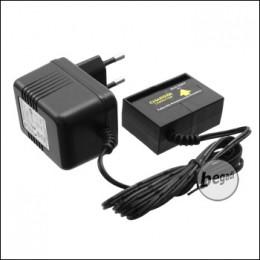 Well 230V Ladegerät für R4 AEP Akkus